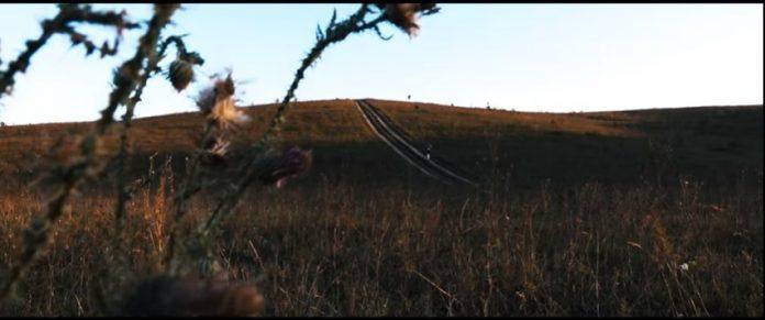 «Ластівонька» Ірини Мостепан